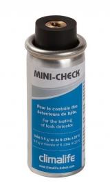 Mini check